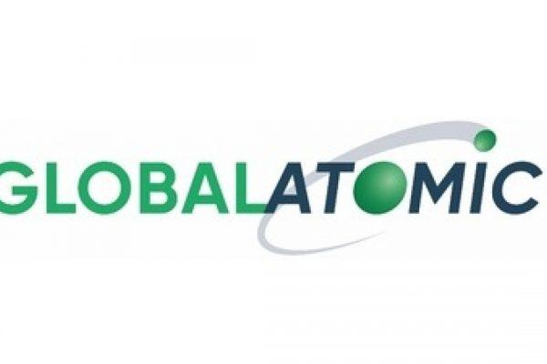 tesis de inversion global atomic